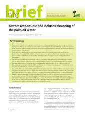 Toward responsible and inclusive financing of the palm oil sector