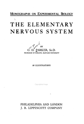 The Elementary Nervous System