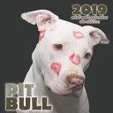 Pit Bull 2019 Mini Wall Calendar (UK Edition)