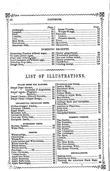 The Rural Annual and Horticultural Directory for the Year 1856  PDF