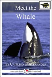Meet the Whale: Educational Version