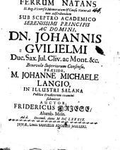 Ferrum natans, 2 Reg. VI, 6. memoratum, et causae naturali non adscribendum