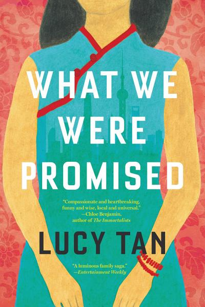 Download What We Were Promised Book