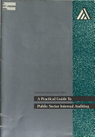 A Practical Guide to Public Sector Internal Auditing PDF