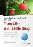 Team Mind und Teamleistung PDF