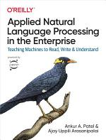 Applied Natural Language Processing in the Enterprise