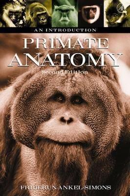 Primate Anatomy PDF
