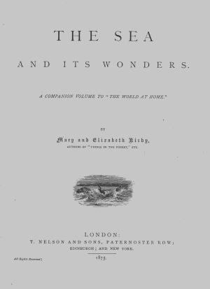 The Sea and Its Wonders PDF