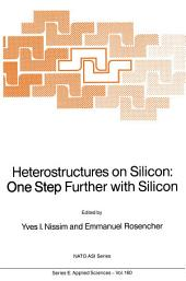 Heterostructures on Silicon: One Step Further with Silicon