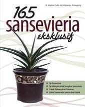 165 Sansevieria Eksklusif