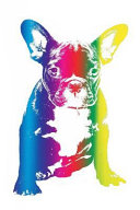 Rainbow French Bulldog Notebook: Frenchie Composition Book Journal Diary for French Bulldog Lovers to Write in - Cool Multicolor Dog Notepad Animal -