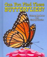 Can You Find These Butterflies  PDF