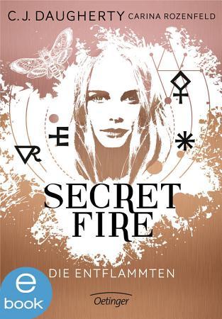Secret Fire  Die Entflammten PDF
