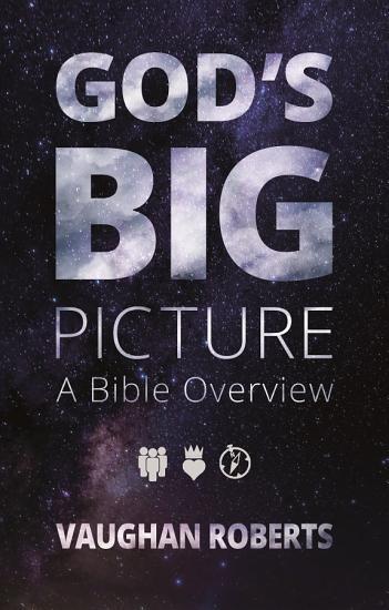 God s Big Picture PDF