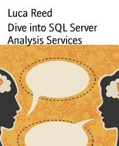 Dive into SQL Server Analysis Services