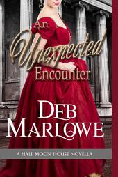 An Unexpected Encounter: A Half Moon House Series Novella