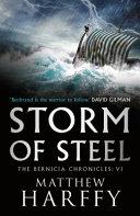 Storm of Steel Book