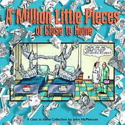 A Million Little Pieces Of Close To Home Book PDF
