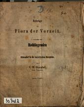 Beiträge zur Flora der Vorzeit namentlich des Rothliegenden bei Erbendorf in der bayerischen Oberpfalz