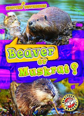 Beaver or Muskrat