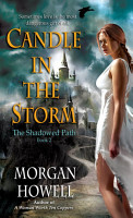 Candle in the Storm PDF