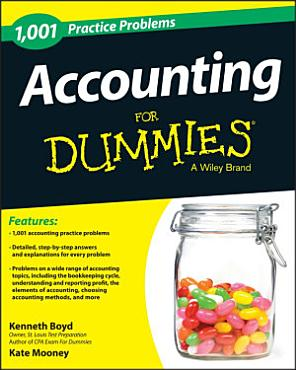 1 001 Accounting Practice Problems For Dummies PDF