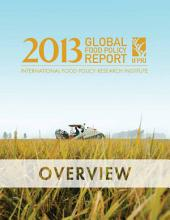 2013 Global food policy report: Overview