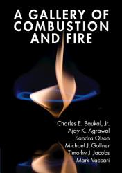 A Gallery of Combustion and Fire PDF