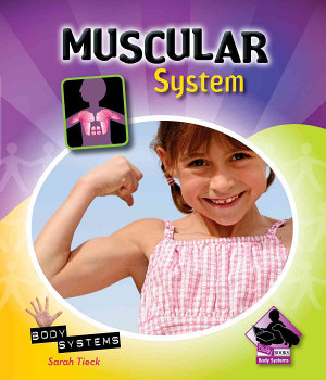 Muscular System PDF