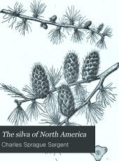 The silva of North America: a description of the trees which grow naturally in North America exclusive of Mexico, Volume 12