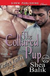 The Collared Pup [Cedar Falls 2]