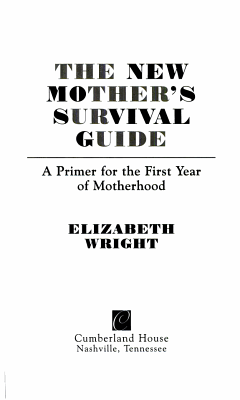 The New Mother s Survival Guide PDF