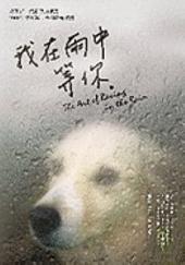 我在雨中等你 【暢銷十萬冊約定紀念版】