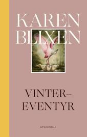 Vinter-eventyr: 2. udgave med moderne retskrivning