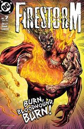 Firestorm (2004-) #7