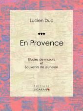 En Provence: Études de moeurs et Souvenirs de jeunesse