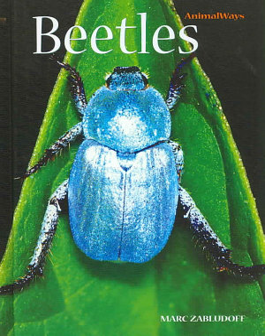 Beetles PDF