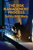 The Risk Management Process PDF
