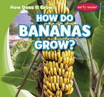 How Do Bananas Grow?