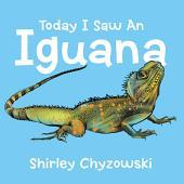 Today I Saw An Iguana