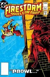 The Fury of Firestorm (1982-) #10