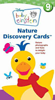 Nature Discovery Cards PDF
