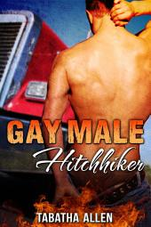 Gay Male Hitchhiker (Older Man Younger Man Fiction): Queer Erotica