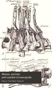 Manus, Sacrum, and Caudals of Sauropoda