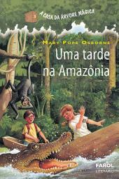 Uma tarde na Amazônia