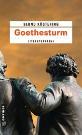 Goethesturm: Hendrik Wilmuts dritter Fall