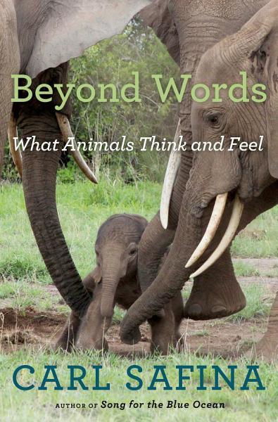 Download Beyond Words Book