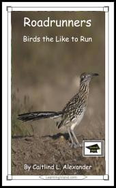 Roadrunners: Birds That Like To Run: Educational Version