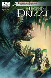 Dungeons & Dragons: Drizzt #4