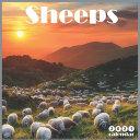 Sheeps 2021 Calendar